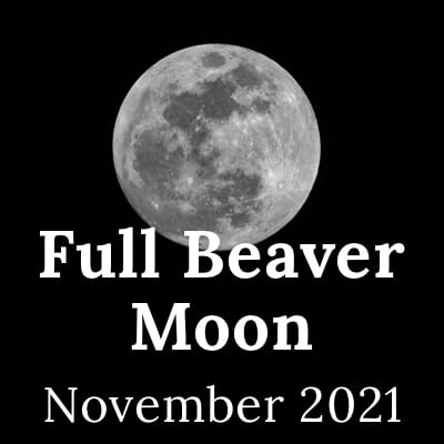Picture of the Full Beaver Moon 2021, the November Full Moon